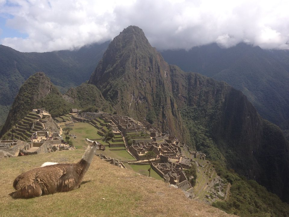 Sharing Machu Picchu with the locals